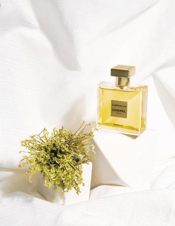 Perfume-1-2_opt.jpeg